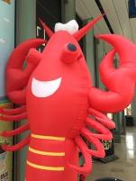 Ici on peut manger du homard ...