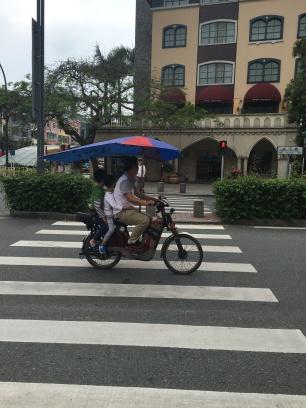 Le parasol / parapluie pour 2 roues 😄
