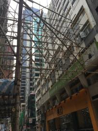 Oui , les échafaudages sont en bambou et ce même pour les gratte-ciel !