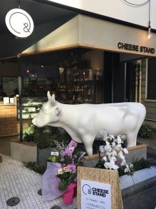 Un nouveau magasin de fromage a ouvert dans notre rue !