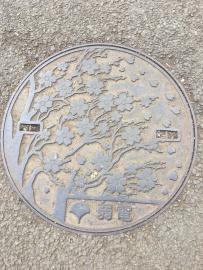 Les plaques d'égouts du parc de Ueno