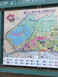 Le plan du parc de Ueno indique les chemins bordés de cerisiers
