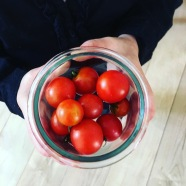 Les tomates de notre terrasse