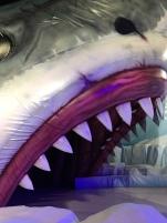 Qui veut glisser dans la gueule du requin ? Mes filles et mon mari ont tenté la glissade !