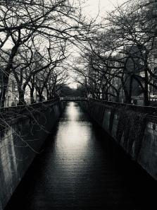 Meguro avant les cerisiers