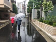 il a plu un peu mais pas trop