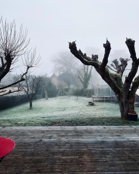Le brouillard de l'hiver français